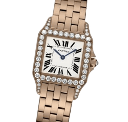 Buy or Sell Cartier Santos Demoiselle WF9007Z8