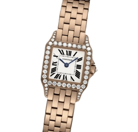 Sell Your Cartier Santos Demoiselle WF9008Z8 Watches
