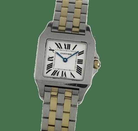 Buy or Sell Cartier Santos Demoiselle W25066Z6
