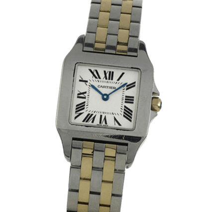 Buy or Sell Cartier Santos Demoiselle W25066Z6