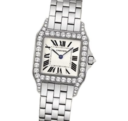 Sell Your Cartier Santos Demoiselle WF9004Y8 Watches