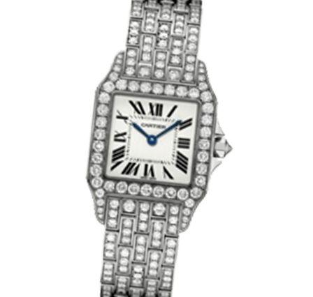 Sell Your Cartier Santos Demoiselle WF9010YA Watches