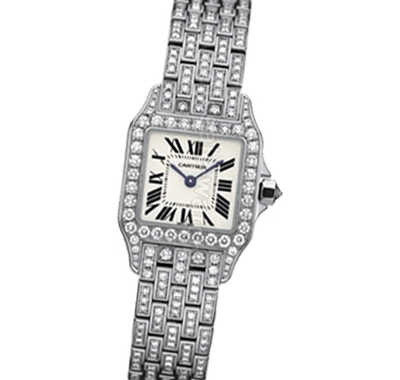 Sell Your Cartier Santos Demoiselle WF9003YA Watches