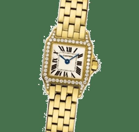 Buy or Sell Cartier Santos Demoiselle WF9006Y7